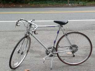 uw-bicycle-small.jpg